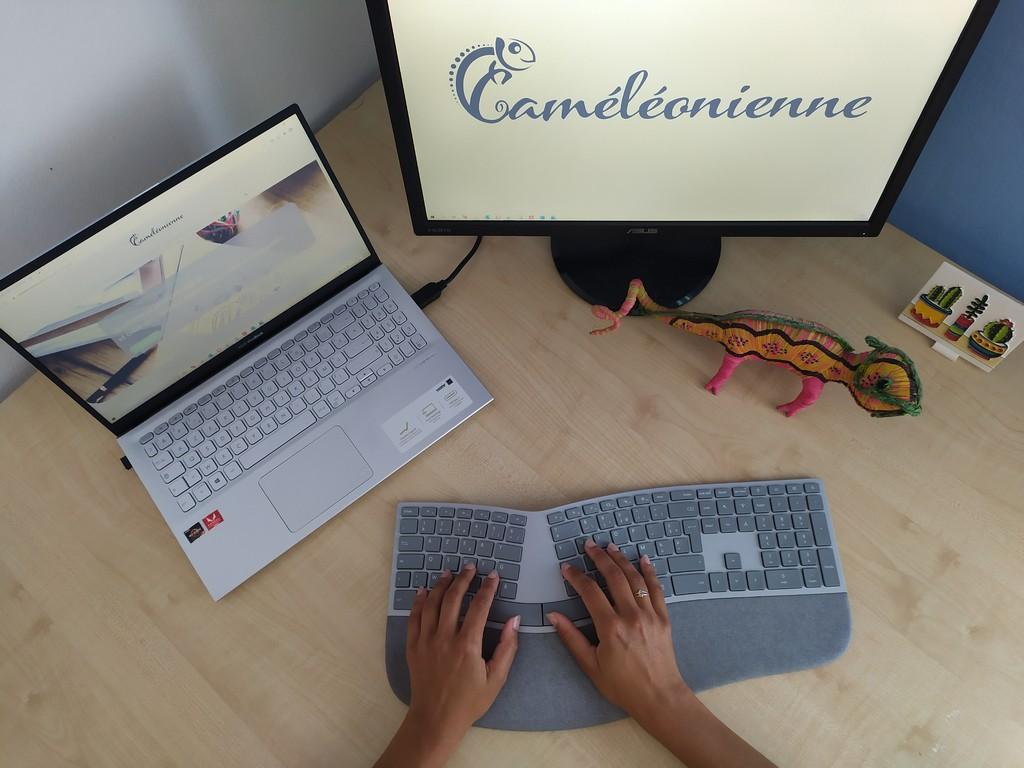 Caméléonienne, qui je suis et quels sont mes outils de travail